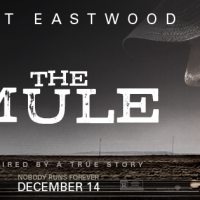 13 most handsome actors in 'The Mule'