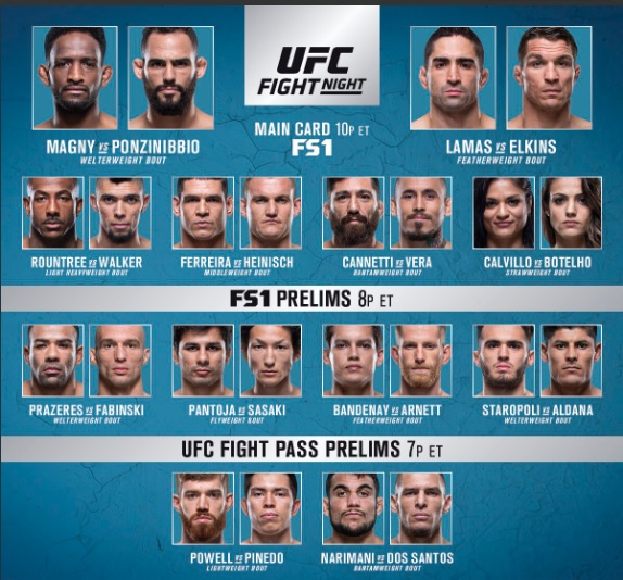 'UFC Fight Night 140' fight card