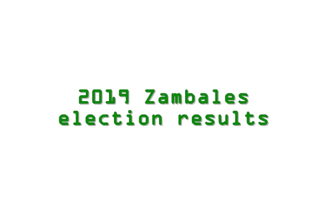 2019 Zambales election results