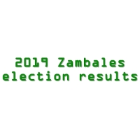 2019 Zambales congressmen, governor, vice governor, board members election results