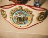 World Kickboxing Network belt