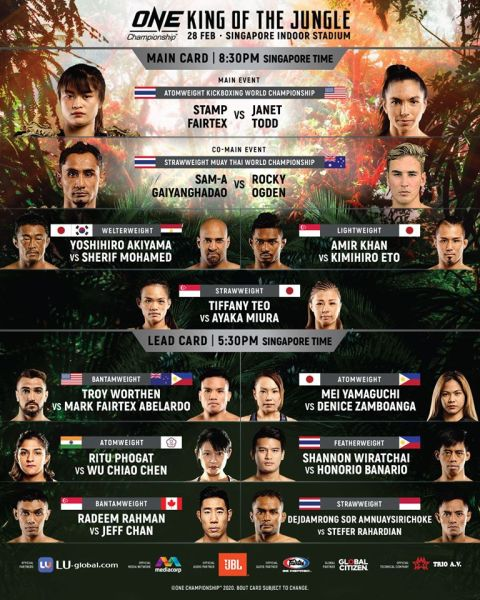 'ONE: King of the Jungle' fight card